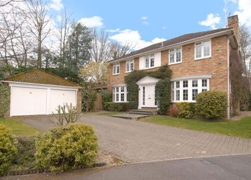 Thumbnail 4 bed detached house to rent in Walton Drive, Ascot