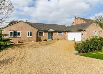 Thumbnail 4 bed detached bungalow for sale in Plains Lane, Littleport, Ely