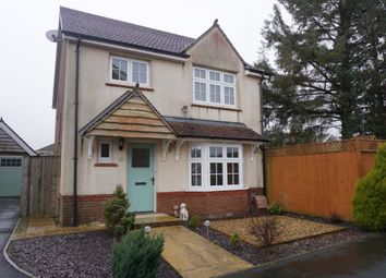 Thumbnail 4 bedroom detached house to rent in Clos Maes Rhedyn, Gorslas, Llanelli