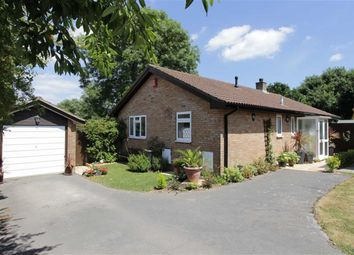Thumbnail 3 bed bungalow for sale in Ashdown Walk, New Milton