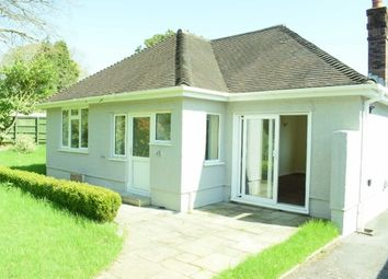 Thumbnail 2 bed detached bungalow to rent in Emmanuel Gardens, Sketty, Swansea