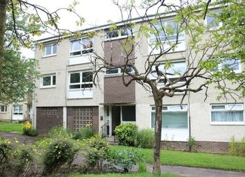 Thumbnail 2 bed flat to rent in Burnblea Gardens, Hamilton