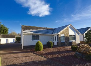 Thumbnail 2 bed detached bungalow for sale in Balminnoch Park, Ayr