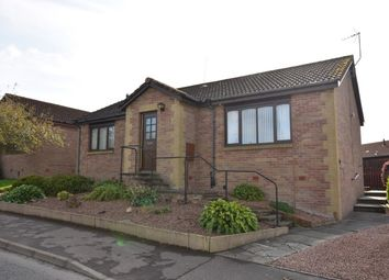 Thumbnail 3 bed detached bungalow for sale in Linn Road, Stanley