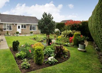 Thumbnail 3 bed bungalow for sale in Northfield, Swanland, East Riding Of Yorkshire
