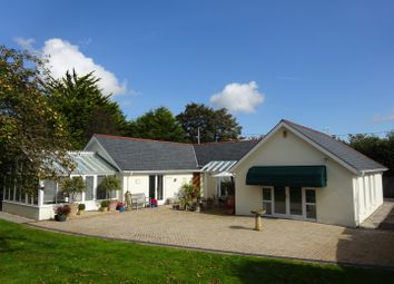 Thumbnail 2 bed detached bungalow for sale in Llanrhidian, Gower, Swansea
