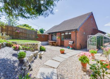 Thumbnail 2 bed semi-detached bungalow to rent in Danvers Way, Westbury