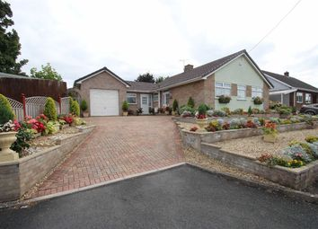 Thumbnail 3 bed detached bungalow for sale in Orchard Road, Westbury, Wiltshire
