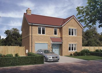 Thumbnail 4 bed detached house for sale in James Lloyd Drive, Stamford Bridge