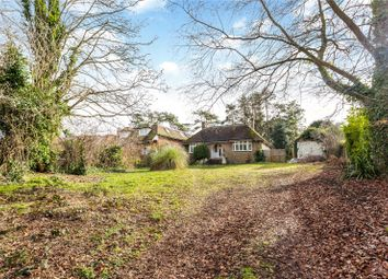 Thumbnail 3 bed detached bungalow for sale in Alresford Road, Winchester, Hampshire