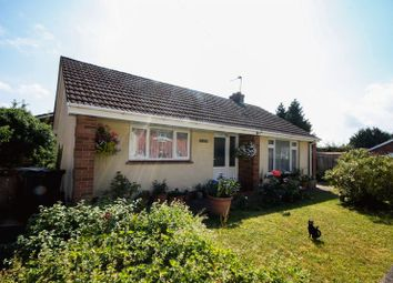 Thumbnail 2 bed detached bungalow to rent in Park Street, Crediton