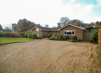 Thumbnail 5 bed detached house for sale in Upper Chobham Road, Camberley, Surrey
