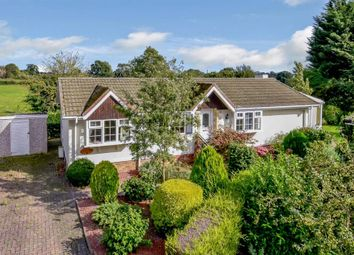Thumbnail 2 bed mobile/park home for sale in Meadowside, Linton On Ouse, York