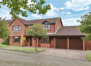 Thumbnail 4 bedroom detached house for sale in Windlesham, Surrey