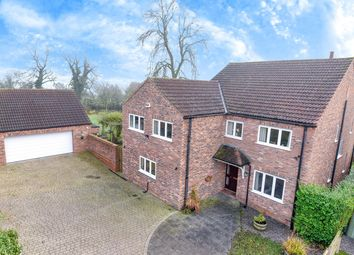Thumbnail 4 bed detached house to rent in Thornlands, Easingwold, York