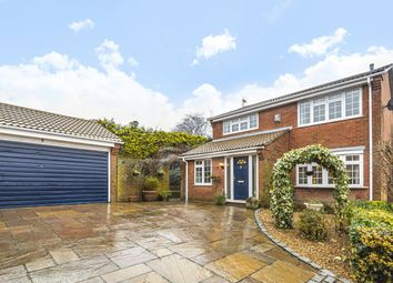 Thumbnail 4 bed detached house for sale in Beck Gardens, Farnham, Surrey