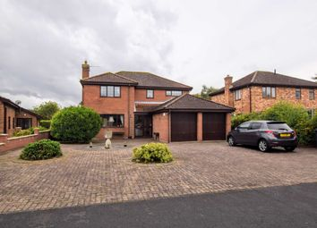 Thumbnail 4 bed detached house for sale in Manor Park, Legbourne