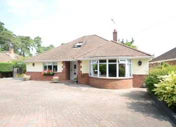 Thumbnail 3 bed bungalow to rent in Reading Road South, Church Crookham, Fleet