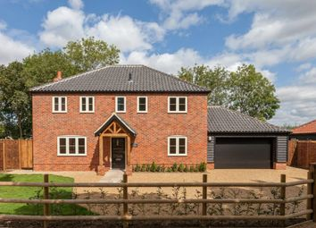 Thumbnail 4 bed detached house for sale in Meadowsweet Loke, Attleborough