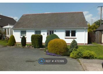 Thumbnail 4 bed bungalow to rent in Lamborough Crescent, Clarbeston Road