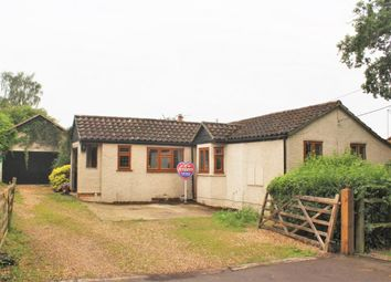Thumbnail 3 bed bungalow for sale in Beech Lane, Normandy, Surrey