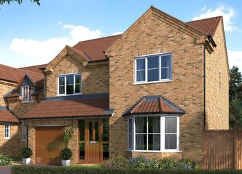Thumbnail 4 bedroom detached house for sale in Humber View, St Chads, Barton