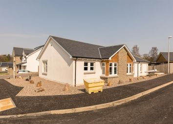4 bed detached bungalow for sale in Mary Countess Way, Glamis, Forfar DD8