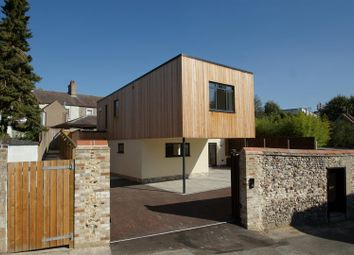 Thumbnail 3 bed detached house for sale in Nether Row, Thetford