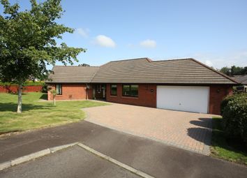 Thumbnail 4 bed bungalow for sale in Maxwelltown Gardens, Dumfries