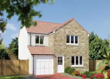 """Thumbnail 4 bed detached house for sale in """"The Leith"""" at Whitehouse Gardens, Gorebridge"""