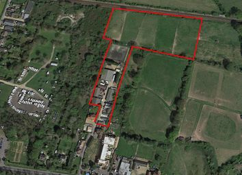 Thumbnail 4 bed equestrian property for sale in Main Road, Bosham