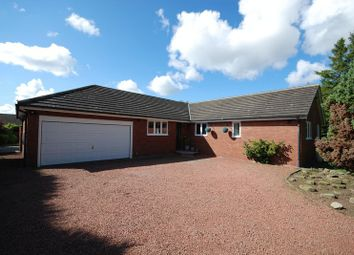 Thumbnail 4 bed bungalow for sale in The Gables, Fairmoor, Morpeth