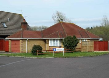 Thumbnail 3 bedroom bungalow to rent in Cherryfields, Gillingham, Dorset