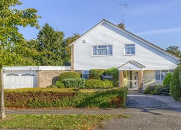 Thumbnail 4 bed detached house for sale in Stag Green Avenue, Old Hatfield, Hertfordshire