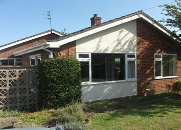 Thumbnail 4 bed bungalow to rent in Mill Road, Blofield, Norwich
