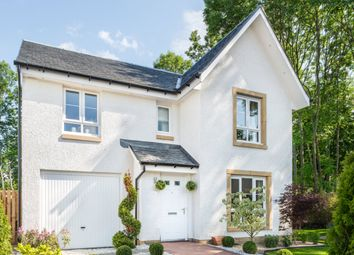 "Thumbnail 4 bed detached house for sale in ""Dunbar"" at Newtonmore Drive, Kirkcaldy"