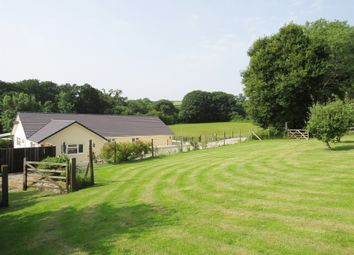 Thumbnail 4 bed detached bungalow for sale in South Brent