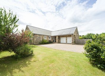 Thumbnail 4 bed bungalow for sale in Booglebush, 2 Wooley Grange, Slaley, Northumberland
