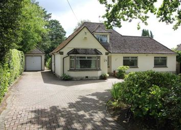 Thumbnail 3 bed bungalow for sale in Crescent Walk, West Parley, Ferndown