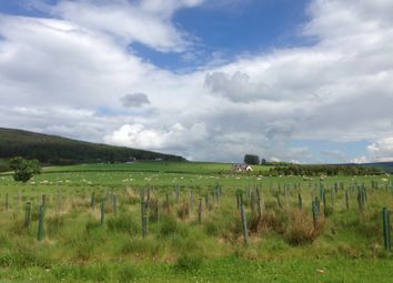 Thumbnail Land for sale in Nr Craigellachie, Moray