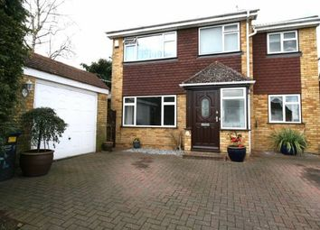 Thumbnail 4 bed detached house for sale in Pout Road, Snodland