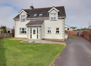 Thumbnail 4 bedroom detached house for sale in Mcveagh's Meadow, Kircubbin