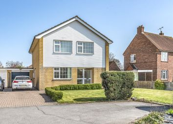 Thumbnail 4 bed detached house to rent in Guildford Road, Woking