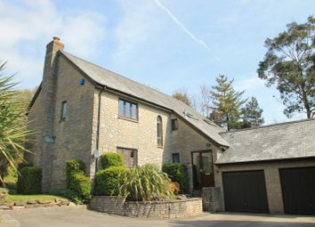 Thumbnail 4 bedroom detached house for sale in Oak Avenue, St Mellion, Saltash