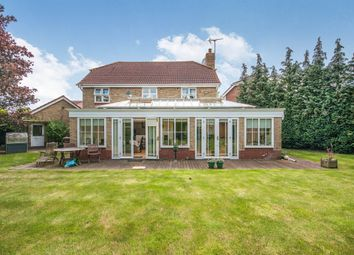 Thumbnail 4 bedroom detached house for sale in Apple Way, Great Baddow, Chelmsford