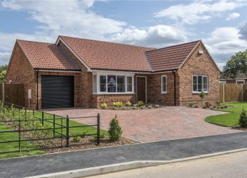 Thumbnail 3 bed detached bungalow for sale in Plot 10 All Saints Close, Little Melton, Norwich