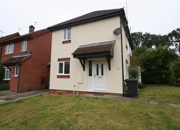 Thumbnail 1 bed terraced house to rent in Chineham, Basingstoke, Hampshire