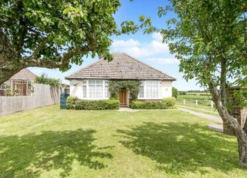 Thumbnail 3 bed bungalow for sale in Wrabness, Manningtree, Essex