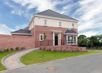 Thumbnail 4 bed detached house for sale in Carrowreagh Road, Dundonald, Belfast