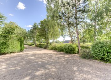 Thumbnail Detached house for sale in Gilston, Harlow